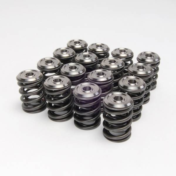 Skunk2 - Skunk2 K-Series Alpha Valve Spring and Titanium Retainer Kit