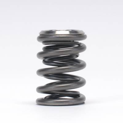 Skunk2 - Skunk2 B-Series Alpha Valve Spring and Titanium Retainer Kit - Image 3