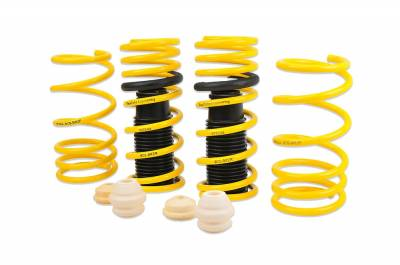 Racecomp Engineering - Racecomp Performance Lowering Springs