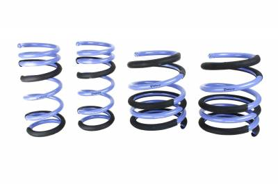 ISC Suspension - ISC Triple S Lowering Springs
